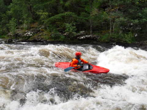 White Water Kayak @ to be arranged